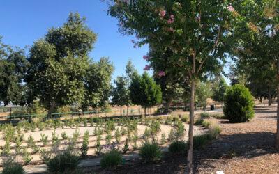 Healing Garden Beautification Project | March 6, 2021